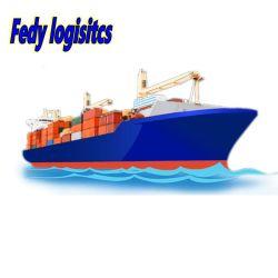 中国からブラジル / サントスへの海上貨物取り扱い業者のエージェント出荷
