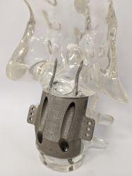 In fabbrica medico poroso personalizzato del sacro ortopedico poroso dello strumento della lega