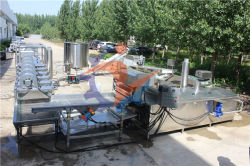 100 kg/h la maquina para fabricar chips de patata fresca