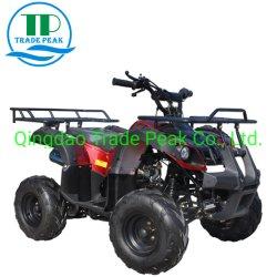 Rennende Ce en EPA verifiëren 125cc ATV