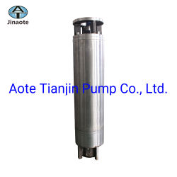 Rewindable Water-Filled Submersíveis Motores Eléctricos