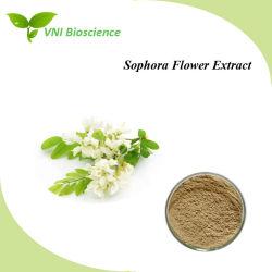 ISO SGS сертифицированы Flos Sophorae извлечения/Sophora цветочный извлечения/Quercetin\Rutin