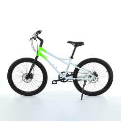 20 인치 관계 3sp 벨트 디스크 학생 자전거