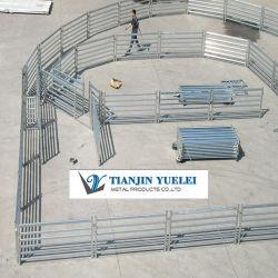 Revêtement de zinc haute panneaux de clôture de l'élevage utilisés pour le bétail/bovins haies avec des prix bon marché