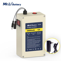 12V 20A Lithium Battery 12V Rechargeable Battery met gelijkstroom Connector voor Little Fan/LED Light