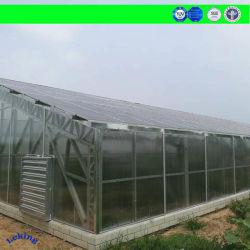 中国の影響が大きく多彩な二重側面の紫外線保護16mm固体ポリカーボネートのパソコンシートのパネル、屋内区分または空気の防衛地下鉄または装置の監視または天井