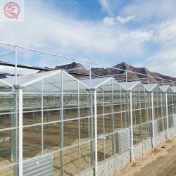 ورقة الكمبيوتر/الزجاج/مادة بناء الصوبة الزجاجية البلاستيكية للزراعة/التجارة