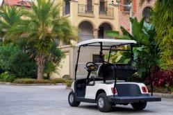 48V 3KW AC de alto desempenho do sistema eléctrico personalizado carrinho de golfe