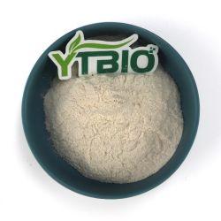 Extrait de soja de grande qualité isoflavone de soja de 40 %