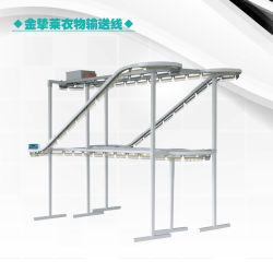 China-industrieller Gebrauch kleidet Förderwerk-Zeile