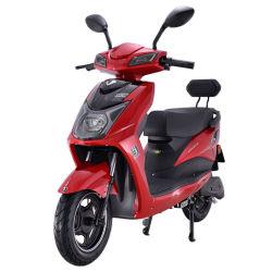 Yang Hermanos ciclomotor motocicleta eléctrica de Scooter de adultos con Back