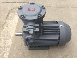 Ca trifásicos motores de prueba de explosión Motores Motores Explosion-Proof ignífugo