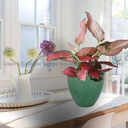 L'autonomie de l'arrosage classique Vogue Maison et Jardin de la céramique émaillée en plastique de l'oeuf Pot de fleur jardin de plantes en pot pour intérieur et extérieur du semoir