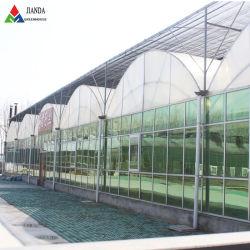 L'isolation/double couche//verre intelligent/film/PC/Légumes de serre pour Fleur/fruit/Ferme/aquaculture/l'élevage/Restaurant/jardin écologique