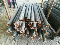 Bâton en bambou naturelavec protection en plastique