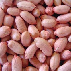 Обнаженная красная кожа арахис и очищенные от кожуры ядра арахиса