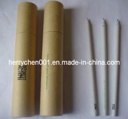 12pk 2 embarcações reciclado Logotipo Hb lápis do papel (SKY-806)