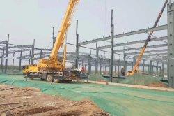 Qualitätspreiswertes großes Überspannungs-vor ausgeführtes Stahlkonstruktion-Lager-Gebäude-Feld-Gewächshaus