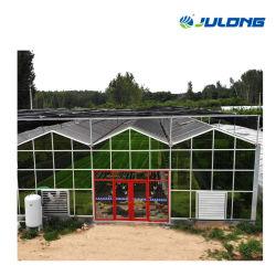 De vidrio tipo Venlo Hidroponía gases de efecto para las verduras y tomate/Flores/fresa/Jardín de recogida/siembra/cría