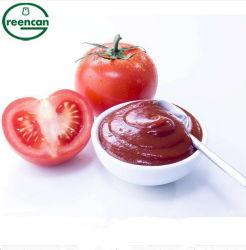 신선한 토마토 페이스트 및 토마토 소스 2200g
