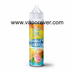 Extraire Ejuice pour EGO de haute qualité de la glace saveur de menthe E liquide avec 0mg ~36mg