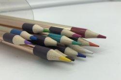 담궈지는 24의 색깔 연필
