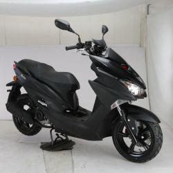 Novo projetado 50cc Gás Motor Scooter Bike com Euro4