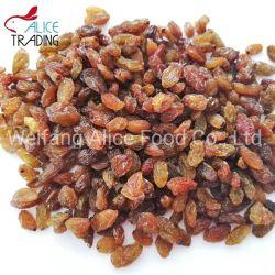 China bewaarde Droge de Leverancier van Vruchten bewaarde de Rozijnen van Sultanarozijn