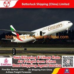 het goedkope snelle verschepen van China aan de Vracht van de Lucht van Zwitserland Bern