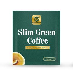 قهوة خضراء عضوية رفيعة ذات ملصق خاص مع جانوديما لوسيدوم النساء يتملن من فقدان الوزن