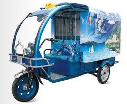 1000W de elektrische Riksja van 3 Wiel/Elektrische Taxi Met drie wielen voor Passagier