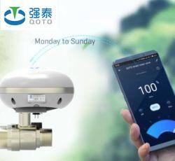L'eau électrique du contrôleur de débit WiFi Jardin minuteur numérique