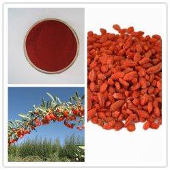 Извлеките / Barbury Goji Berry Wolfberry фрукты извлеките с помощью Lycium Barbarum Полисахаридов