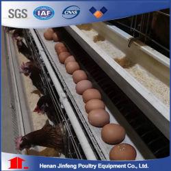 Volautomatische Solar Power 1000 eieren Kip Ei Collectie