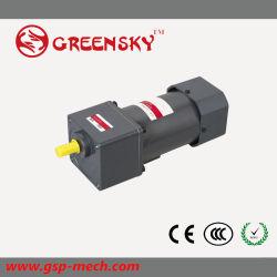 120W 104mm 저속 마이크로 컴퓨터 AC 감응작용 기어 모터