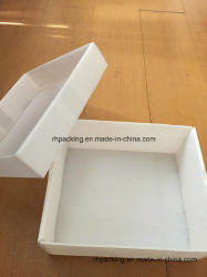 PP Boîte de pliage/polypropylène étanche Boxt PP Flûte Boîte en carton ondulé