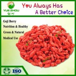 La nouvelle récolte Goji Berry organiques séchés Goji Berry de Ningxia avec prix