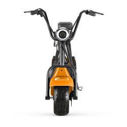 motorino elettrico del motorino della visualizzazione 60V 1000W Citycoco dell'affissione a cristalli liquidi 18inch con il E-Motorino del motorino di mobilità della sede