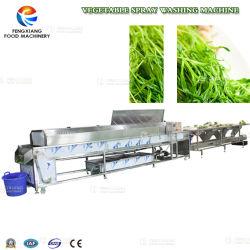 Txd-5000 과일 & 야채 선택 세척 준비 선