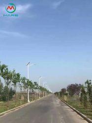 Piscina de alta qualidade 40W a lâmpada de Rua Solar de LED com painel solar