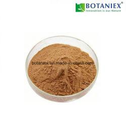 Fábrica de GMP Extracto de té verde de alimentación de un 20% de la L-Theanine para la relajación