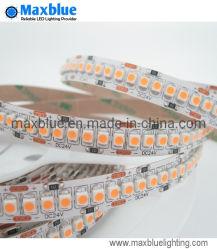 Alto indicatore luminoso di striscia di alta densità 3528 LED di Istruzione Autodidattica di DC24V/DC12V 240LEDs/M