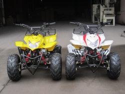 가솔린 쿼드 자전거 기관자전차 ATV 110cc 중국 110cc 소형 ATV