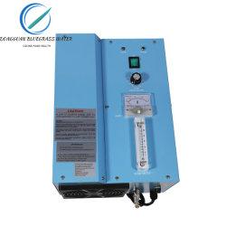 Ozon-Generator-Pool-Reinigung-Maschinen-Ozonisator-Reinigungsmittel des Wasser-8g/H
