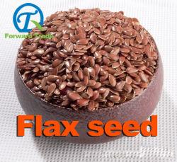 100% Castanho, Branco Natural Biológico das sementes de linho