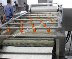 Lavatrice per la pulizia della spazzola di cocco/Data/Potato/Pere Fruit