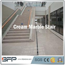 천연 크림 대리석 석재 계단/계단/스텝 & 라이저/건설 장식을 위한 읽기