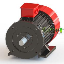 수력 전기 강화된 교체 에너지 발전기 0.5kw 30rpm
