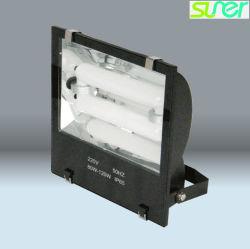 調節可能な日光の屋外の照明低周波の誘導の洪水ライト80W 5000K IP65