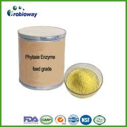 Стабильной Phytase Alpha Amylase Protease ферментов продовольственных добавок